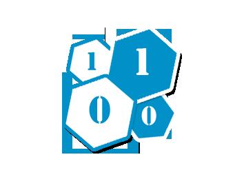 1010_solo