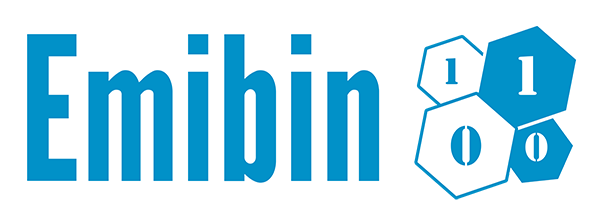 Emibin Logo Big